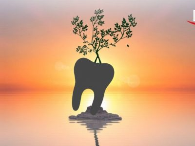 Holistic Oral Care Trends in Dentistry
