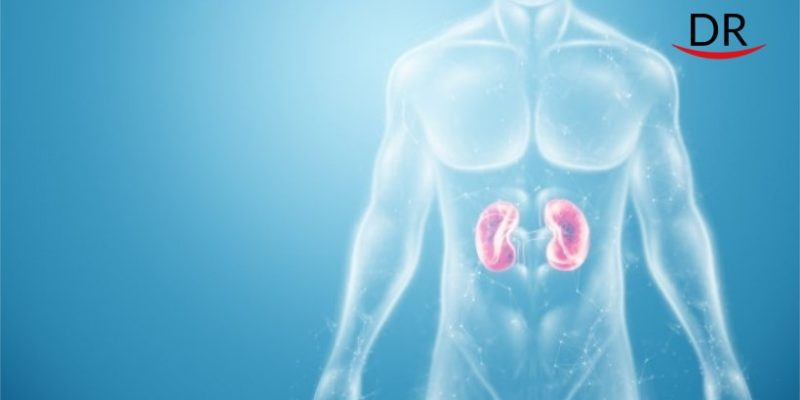 Inflammation in Gums can Affect Kidney Function-A Recent Study.