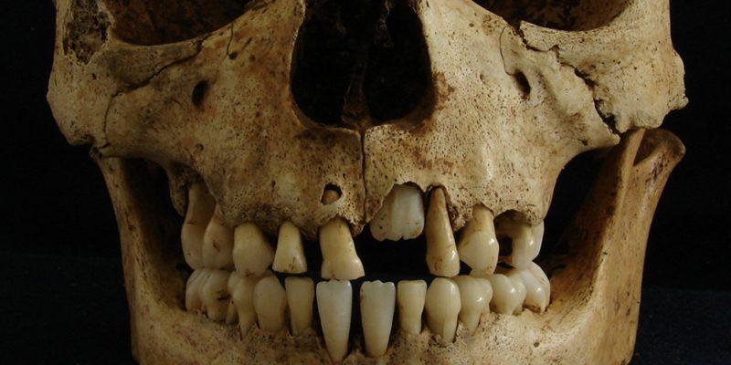 Paleogenomics: How teeth told the history of epidemics!